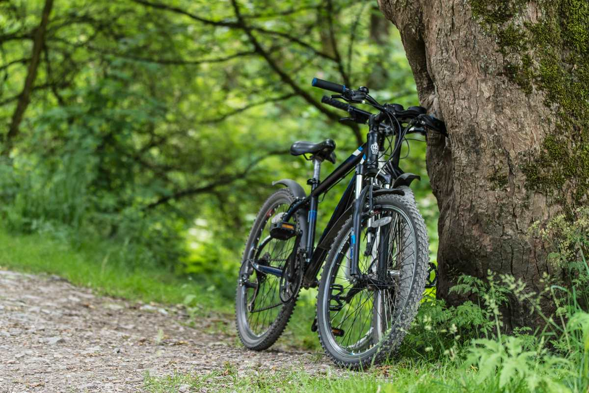 Monsal Trail Cycle Hire at Blackwell Mill